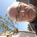 Pierrot, 66 ans, Vitré, France
