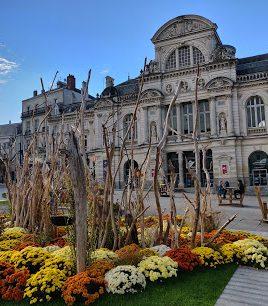 beni, 41 ans, Angers, France